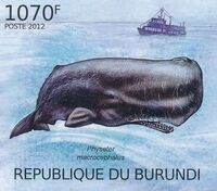 Burundi 2012 Protection of Nature - Save the Whales j