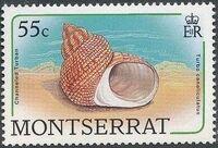 Montserrat 1988 Sea Shells g