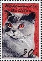 Netherlands Antilles 2003 Cats d