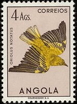 Angola 1951 Birds from Angola l