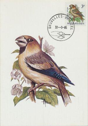 Belgium 1985 Birds MCc