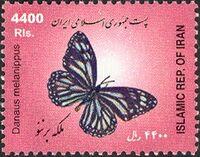 Iran 2005 Butterflies b