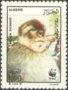 Algeria 1988 WWF - Barbary Macaque c