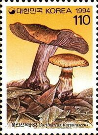 Korea (South) 1994 Mushrooms (2nd Issue) c