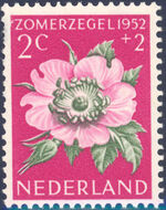 Netherlands 1952 Surtax for Social, Cultural and Medical Purposes a