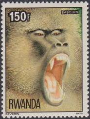 Rwanda 1978 Apes h
