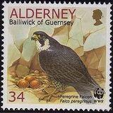 Alderney 2000 WWF Peregrine Falcon c
