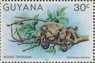 Guyana 1981 Wildlife j