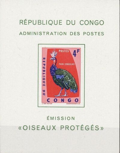 Congo, Democratic Republic of 1963 Protected Birds (1st Group) SSa