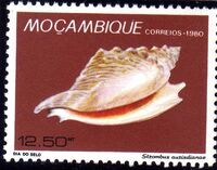 Mozambique 1980 Stamp Day - Maritime Shells of Mozambique d