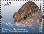 Portugal 2016 Fishes of the Mediterranean h