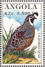 Angola 1996 Hunting Birds a