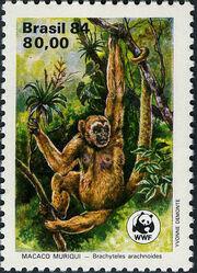 Brazil 1984 WWF - Southern Muriqui b