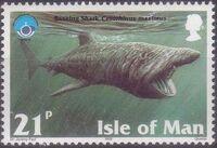 Isle of Man 1998 Year of the Ocean - Marine Mammals b