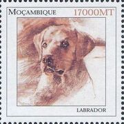 Mozambique 2002 The Wonderful World of Dogs a