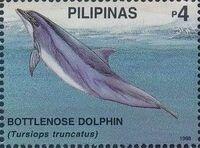 Philippines 1998 Marine Mammals Found in Philipines Waters a
