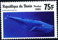 Benin 1996 Marine Mammals c