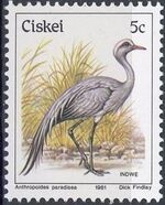 Ciskei 1981 Definitive - Birds e