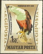 Hungary 1962 65th Anniversary of the Agricultural Museum - Birds of Prey m