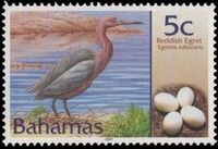 Bahamas 2001 Birds and Eggs a