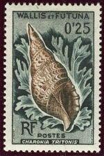 Wallis and Futuna 1962 Sea Shells a