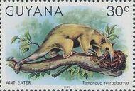 Guyana 1981 Wildlife h