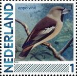 Netherlands 2011 Birds in Netherlands a2