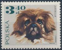 Poland 1969 Dogs f