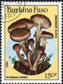 Burkina Faso 1985 Fungi f.jpg