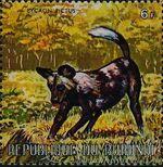 Burundi 1971 Animals y