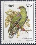 Ciskei 1981 Definitive - Birds n