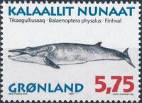 Greenland 1997 Whales b