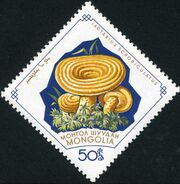 Mongolia 1964 Mushrooms f