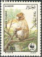 Algeria 1988 WWF - Barbary Macaque d