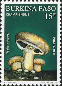 Burkina Faso 1990 Mushrooms b