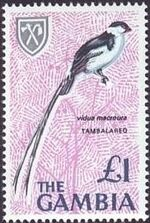 Gambia 1966 Birds m
