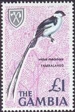 Gambia 1966 Birds m