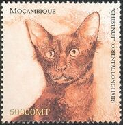 Mozambique 2002 The Wonderful World of Cats g