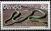 Venda 1986 Reptiles h