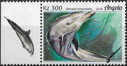 Angola 2018 Wildlife of Angola - Dolphins c