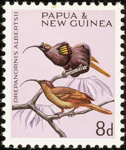 Papua New Guinea 1964 Birds b