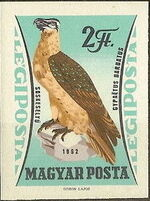 Hungary 1962 65th Anniversary of the Agricultural Museum - Birds of Prey n