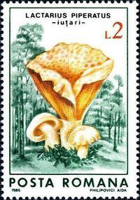 Romania 1986 Mushrooms c