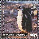 British Antarctic Territory 2011 Frozen Planet - Penguins e