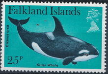 Falkland Islands 1980 Porpoises & Dolphins f