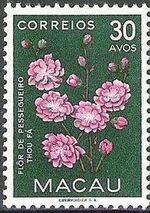 Macao 1953 Indigenous Flowers f