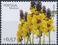 Madeira 2006 Madeira Flowers c