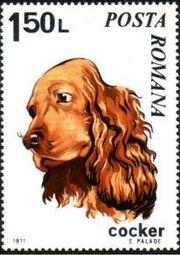 Romania 1971 Dogs e