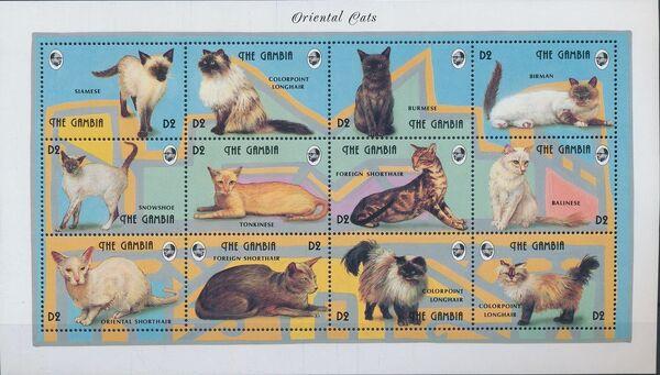 Gambia 1993 Oriental Cats Sa