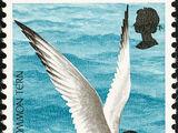 Jersey 1975 Sea Birds